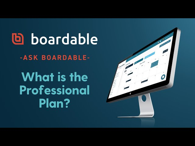 What is the Professional Plan?
