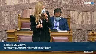 ΥφΑΑΤ Φωτεινή Αραμπατζή: Ομιλία για την υλοποίηση της ψηφιακής πλατφόρμας easy_agro_expo (02.12.20)