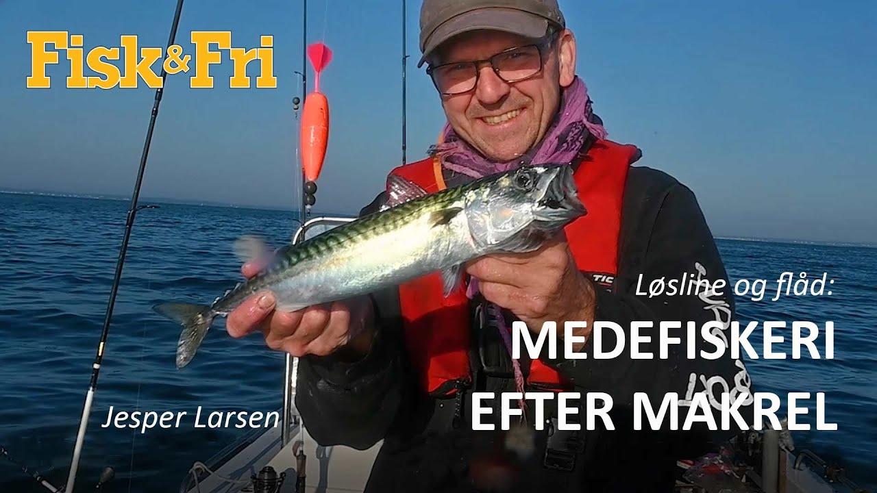 NY VIDEO: MEDEFISKERI EFTER MAKREL MED LØSLINE OG FLÅD