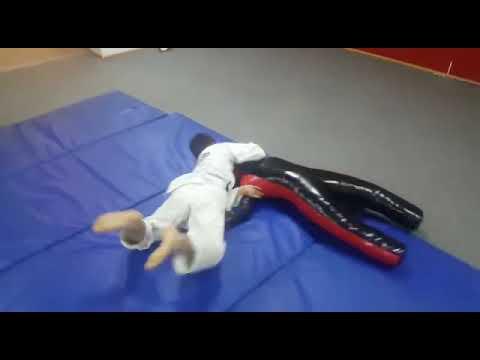 Тренировка с манекеном для борьбы SportPanda