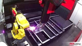 TCI Cutting Spaceline Fiber