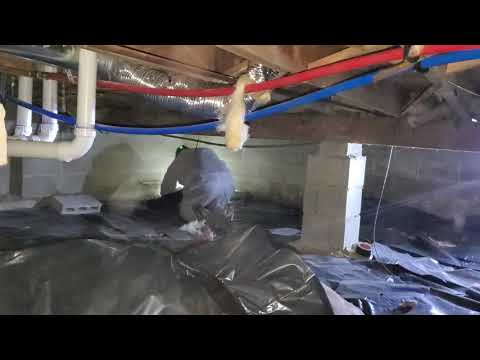 Due to high humidity levels, this homeowner in Howell, NJ had developed mold throughout his crawl space.