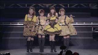 モーニングコーヒー (2013 LIVE)