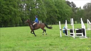 Bennachie Pony Club Rally