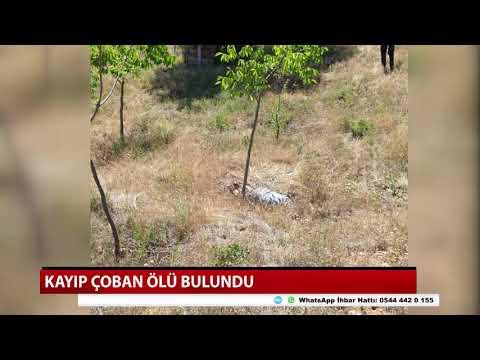 Konya'da çoban ölü bulundu