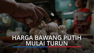 Harga Bawang Putih di Padang Mulai Turun, 1 Kg Sudah Rp 20 Ribu, Kedelai Impor Naik