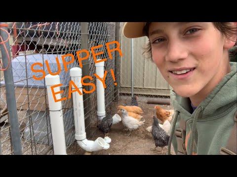 , title : 'DIY Easy Chicken Feeder (Cheap!!)