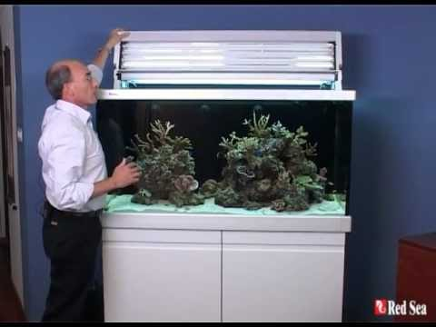 red sea max s 500 complete plug play coral reef aquarium. Black Bedroom Furniture Sets. Home Design Ideas