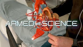 3-D mapping of the heart