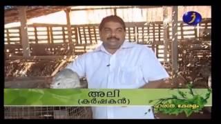 DocumentaryonRabbitFarminginAnsiGoatFarmPart-1