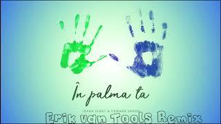 Ioana Ignat X Edward Sanda   In Palma Ta (Erik Van Tools Remix)