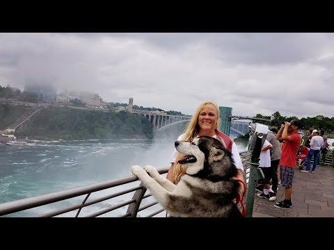 Tonka Tours Niagara Falls ❤️!