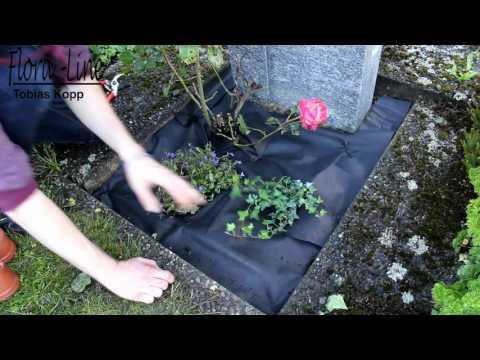 Anleitung für Grabbepflanzung: Pflegeleichtes Steingrab