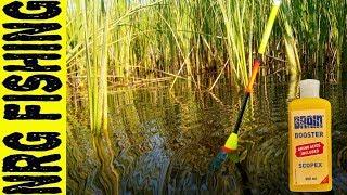 Секреты ловля карася на поплавочную удочку