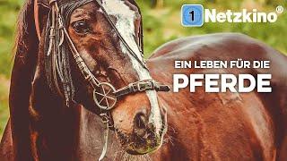 Ein Leben für die Pferde (ganzer Tierfilm auf deutsch, kompletter Spielfilm in voller Länge)