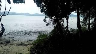 Breathtaking Phang Nga Bay Views from this Large Flat Land Plot in Koh Yao Noi