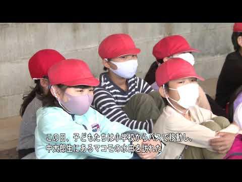 Misugi Elementary School
