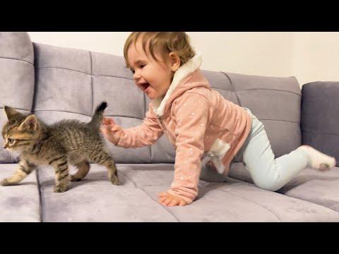 סרטון מקסים של ילדה קטנה משחקת עם חתלתולה