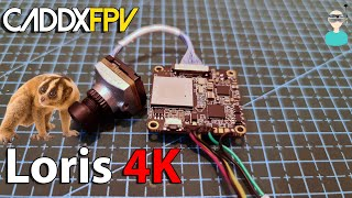 Caddx Loris - Overview, Latency Test & Flight Footage