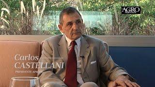 Carlos Castellani - Presidente de Apache