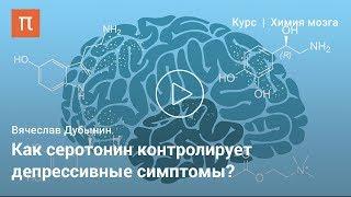 Серотонин —Вячеслав Дубынин