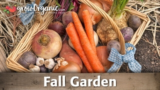 What To Plant In Your Organic, Fall Vegetable Garden