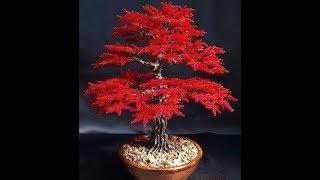 Дерево из бисера . Мастер  - класс. Beaded Tree. Master Class