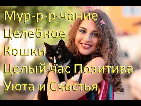 Песня валерия формула счастья текст песни минус