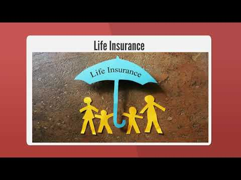 mp4 Insurance Broker Jobs Dublin, download Insurance Broker Jobs Dublin video klip Insurance Broker Jobs Dublin