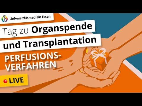 Perfusionsverfahren –Hoffnung für Patienten, die auf ein Organ warten?