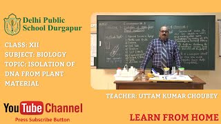 Class XII   TOPIC: ISOLATION OF DNA FROM PLANT MATERIAL   Biology   Lab   DPS Durgapur