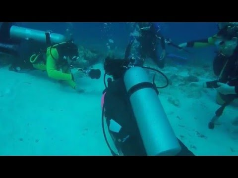 The Best Drift Diving In the World, Cozumel Mexico 01/25/2016