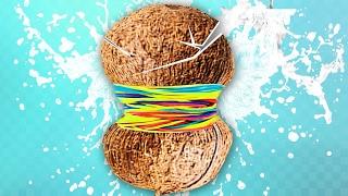 EXPERIMENT   Kokos Mit Gummibänder Platzen!? 🍎
