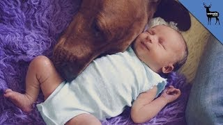Don't Bring Your Newborn Home Without Watching This!