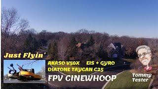 FPV Cinewhoop | Akaso V50X | Taycan C25 | Fun Flying
