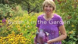 Vegetable Garden Tour #4