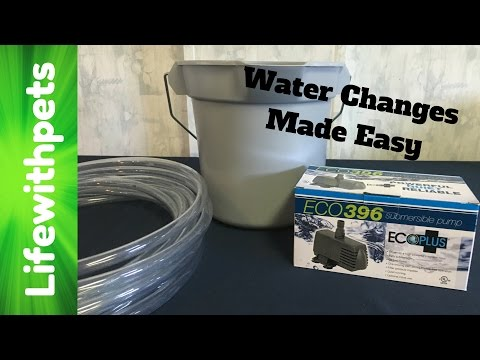 How to do Easy Water Changes using a Pump