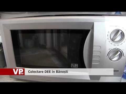 Colectare DEE în Bănești