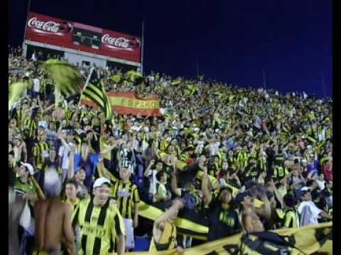 """""""Es para vos gallina"""" Barra: Barra Amsterdam • Club: Peñarol"""
