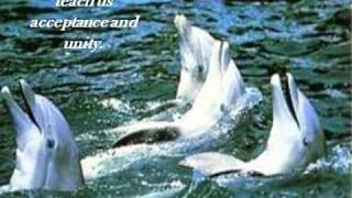 Angels of the Sea-11-20-12-31_wmv.wmv