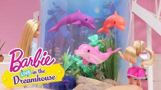 Mazlíci | Barbie LIVE! In The Dreamhouse | Barbie