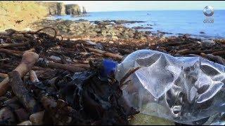 Factor Ciencia - Plástico, depredador de los océanos