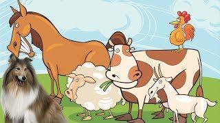 ДОМАШНИЕ ЖИВОТНЫЕ. музыкальный мультик. Ферма Микки. все серии подряд. Кошка, корова, утка