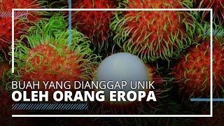 6 Buah Khas Indonesia yang Dianggap Unik di Negara Lain, Termasuk Rambutan
