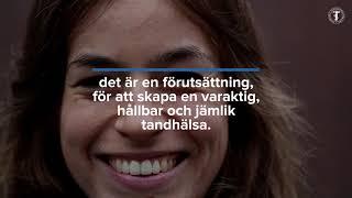 Se vad Sveriges Tandläkarförbund anser om jämlik tandvård, del 3