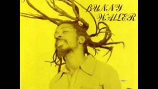 05 - Roots Man Skanking - Bunny Wailer