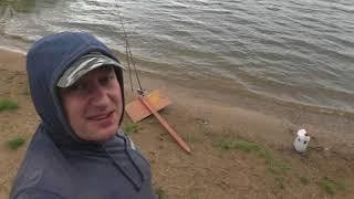 Клев рыбы на озернинском водохранилище