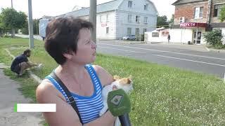 Харків'яни вимагають встановити світлофор на проблемному перехресті