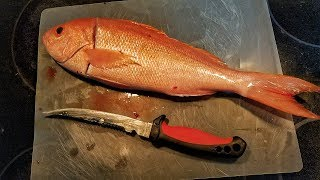 Catch and Cook Best Tasting Fish In The Ocean! Vermilion Snapper (AMAZING)