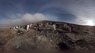 Join the huddle Check out this awesome 360 film produced by BirdLife